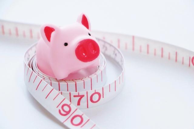 ターミナリアスリムは脂肪と糖の分解を抑える